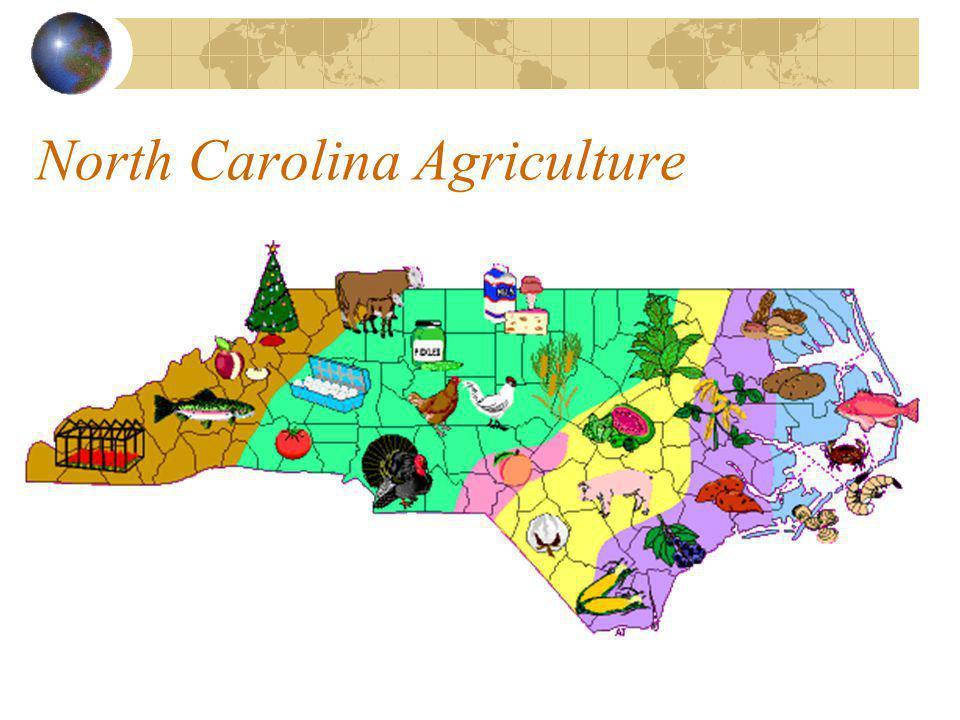 North Carolina Agriculture Top Ten Counties in Farm Cash Receipts, North Carolina, 2003
