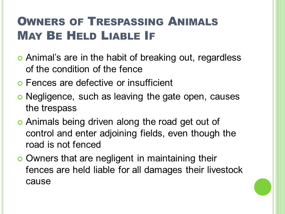 O WNERS OF T RESPASSING A NIMALS M AY B E H ELD L IABLE I F Animal's are in the habit of breaking out, regardless of the condition of the fence Fences are defective or insufficient Negligence, such as leaving the gate open, causes the trespass Animals being driven along the road get out of control and enter adjoining fields, even though the road is not fenced Owners that are negligent in maintaining their fences are held liable for all damages their livestock cause