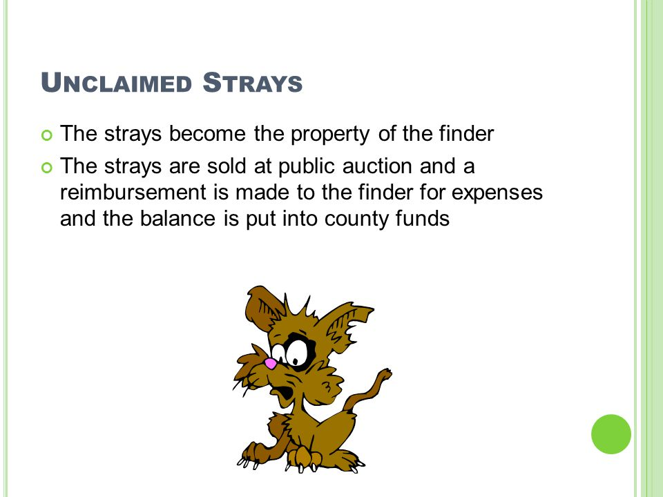 U NCLAIMED S TRAYS The strays become the property of the finder The strays are sold at public auction and a reimbursement is made to the finder for expenses and the balance is put into county funds