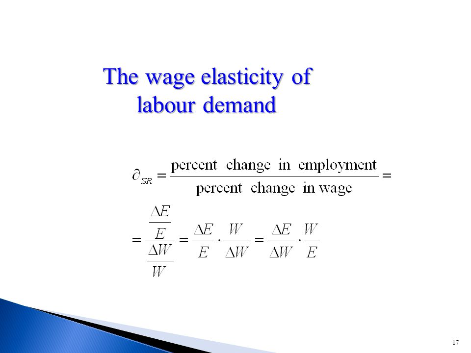17 The wage elasticity of labour demand