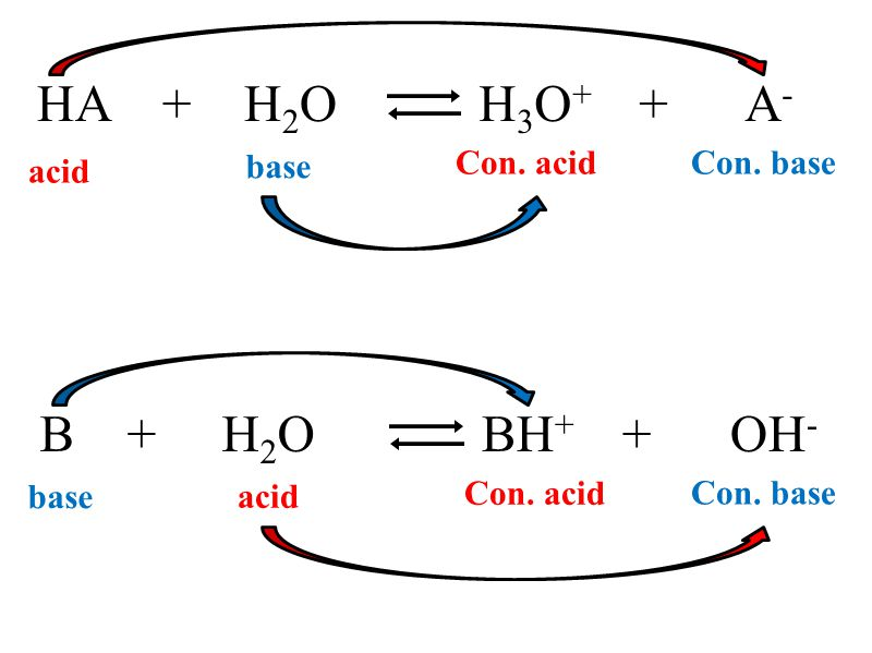 HA + H 2 O base acid H 3 O + + A - Con. baseCon. acid B + H 2 O base acid BH + + OH - Con. base Con. acid