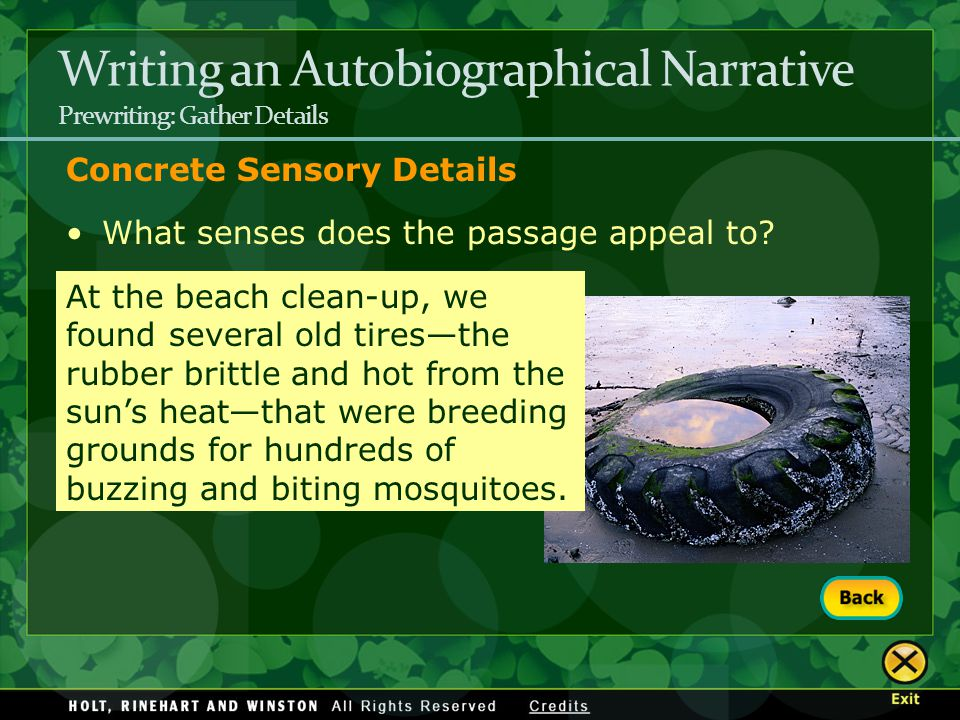 Writing an Autobiographical Narrative Prewriting: Gather Details Concrete Sensory Details What senses does the passage appeal to? At the beach clean-u