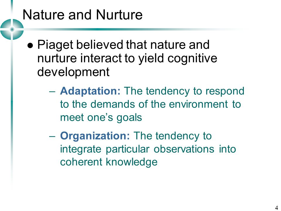 4 Nature and Nurture Piaget believed that nature and nurture interact to yield cognitive development –Adaptation: The tendency to respond to the demands of the environment to meet one's goals –Organization: The tendency to integrate particular observations into coherent knowledge