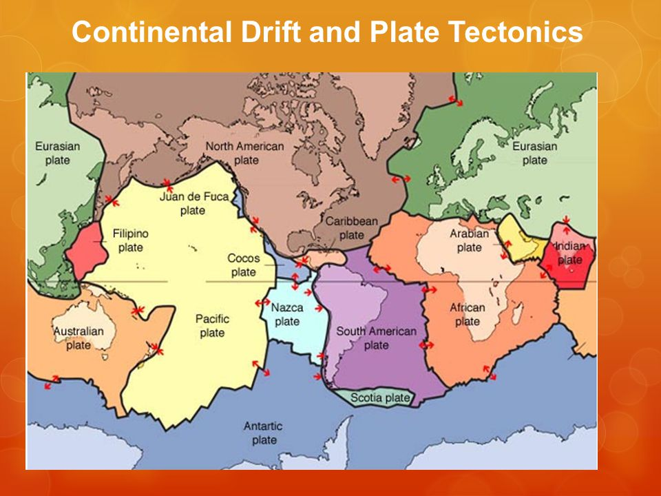 Various Geological Processes Take Place at Plate Boundaries