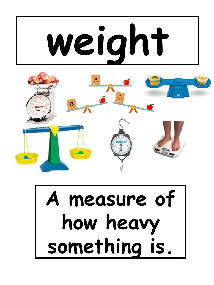 weight A measure of how heavy something is.
