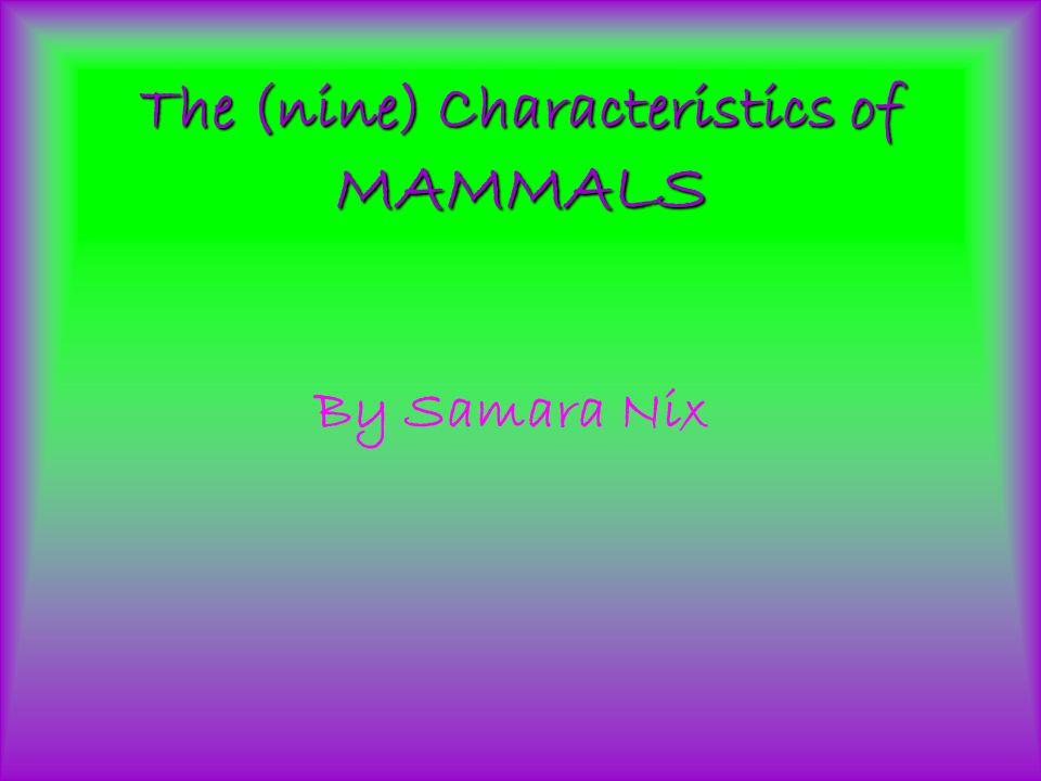 The (nine) Characteristics of MAMMALS By Samara Nix