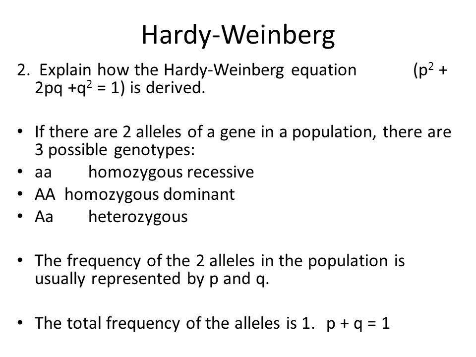 Hardy-Weinberg 2. Explain how the Hardy-Weinberg equation (p 2 + 2pq +q 2 = 1) is derived. If there are 2 alleles of a gene in a population, there are