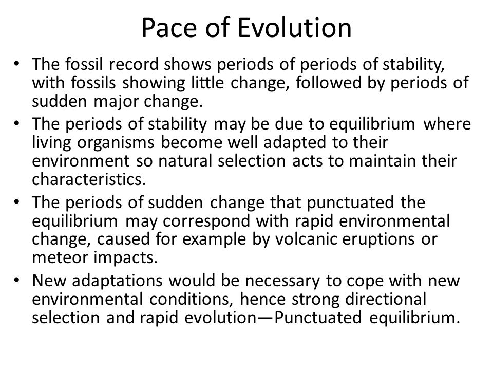 Pace of Evolution The fossil record shows periods of periods of stability, with fossils showing little change, followed by periods of sudden major cha