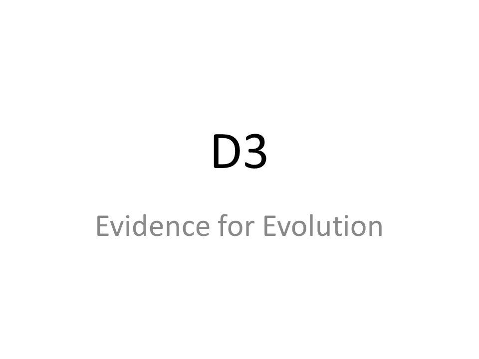 D3 Evidence for Evolution
