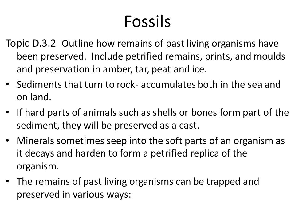 Fossils Topic D.3.2 Outline how remains of past living organisms have been preserved. Include petrified remains, prints, and moulds and preservation i