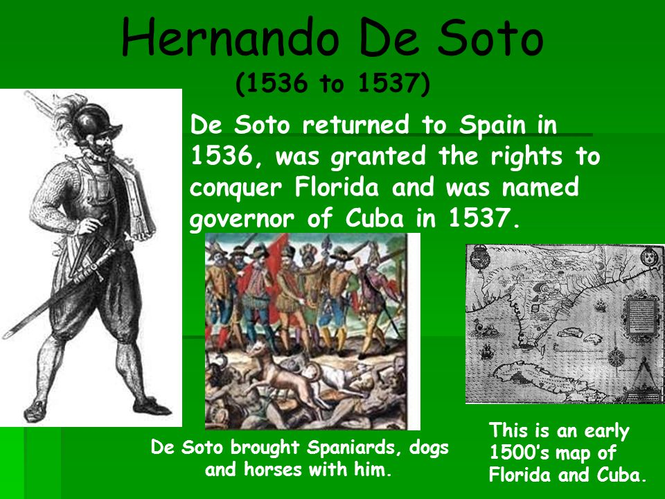 Hernando De Soto (1536 to 1537) De Soto brought Spaniards, dogs and horses with him. De Soto returned to Spain in 1536, was granted the rights to conq
