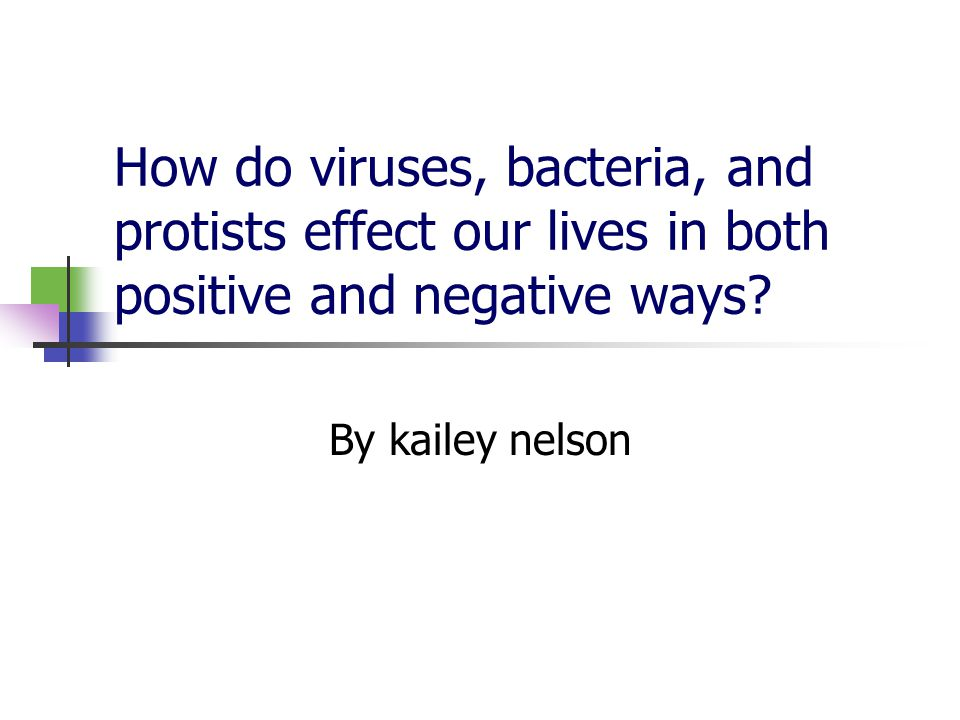 How do viruses, bacteria, and protists effect our lives in both positive and negative ways? By kailey nelson