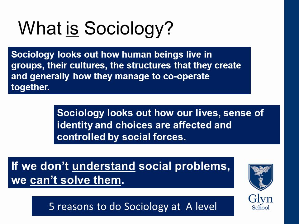 What is Sociology? Sociology looks out how human beings live in groups, their cultures, the structures that they create and generally how they manage