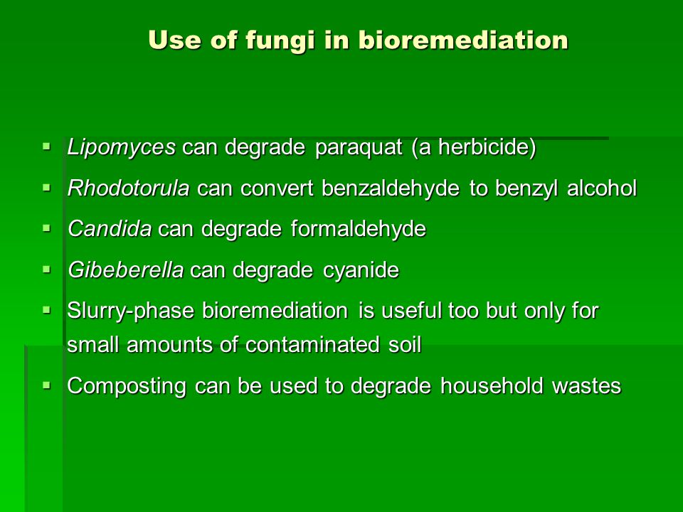 Use of fungi in bioremediation  Lipomyces can degrade paraquat (a herbicide)  Rhodotorula can convert benzaldehyde to benzyl alcohol  Candida can degrade formaldehyde  Gibeberella can degrade cyanide  Slurry-phase bioremediation is useful too but only for small amounts of contaminated soil  Composting can be used to degrade household wastes