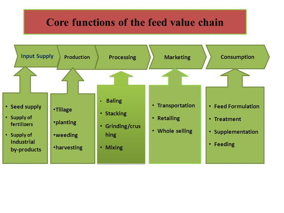 Core functions of the feed value chain Input Supply Production Processing Marketing Seed supply Supply of fertilizers Supply of Industrial by-products