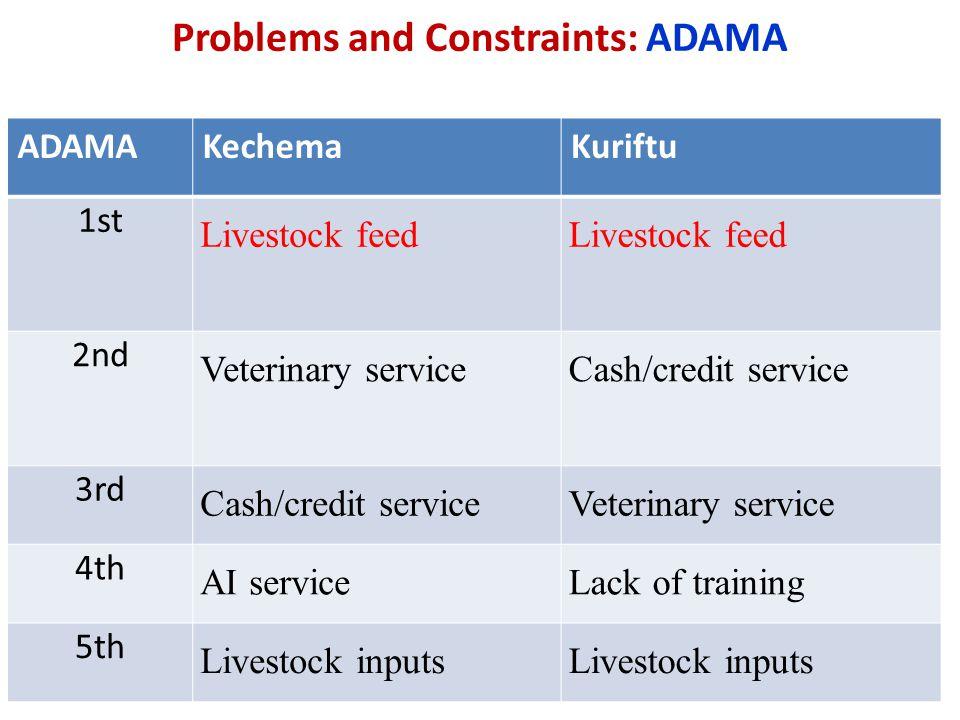 Problems and Constraints: ADAMA ADAMAKechemaKuriftu 1st Livestock feed 2nd Veterinary service Cash/credit service 3rd Cash/credit serviceVeterinary se