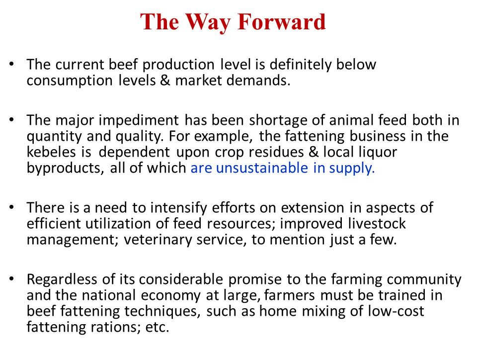 The Way Forward The current beef production level is definitely below consumption levels & market demands. The major impediment has been shortage of a