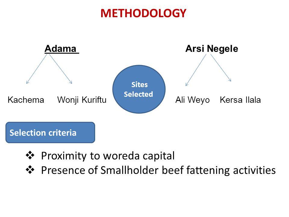 METHODOLOGY Adama Arsi Negele Kachema Wonji Kuriftu Ali Weyo Kersa Ilala  Proximity to woreda capital  Presence of Smallholder beef fattening activi