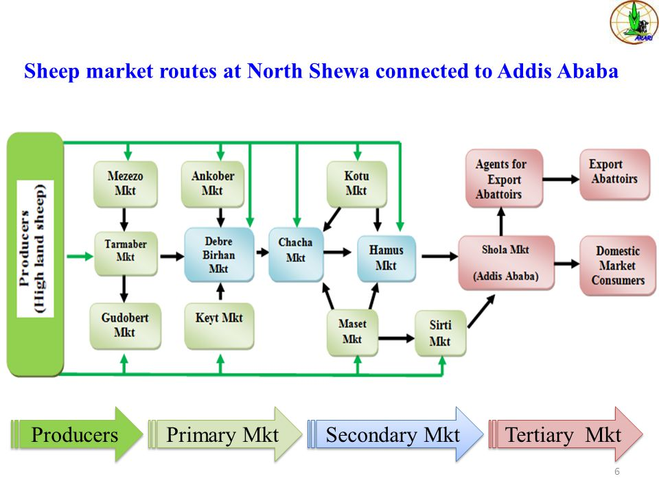 Sheep market routes at North Shewa connected to Addis Ababa 6 Producers Primary Mkt Secondary Mkt Tertiary Mkt