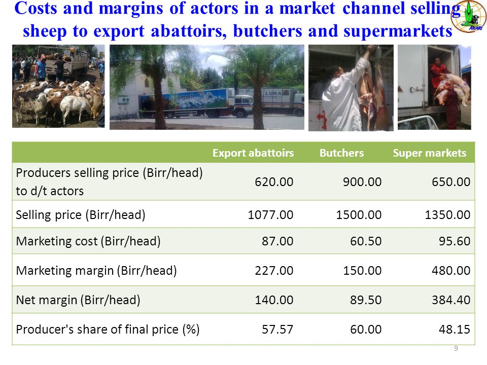 Costs and margins of actors in a market channel selling sheep to export abattoirs, butchers and supermarkets Export abattoirsButchersSuper markets Producers selling price (Birr/head) to d/t actors 620.00900.00650.00 Selling price (Birr/head)1077.001500.001350.00 Marketing cost (Birr/head)87.0060.5095.60 Marketing margin (Birr/head)227.00150.00480.00 Net margin (Birr/head)140.0089.50384.40 Producer s share of final price (%)57.5760.0048.15 9