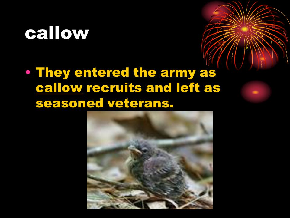 callow They entered the army as callow recruits and left as seasoned veterans.