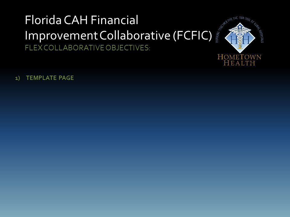 Florida CAH Financial Improvement Collaborative (FCFIC) FLEX COLLABORATIVE OBJECTIVES: 1)TEMPLATE PAGE