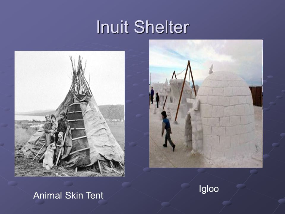 Inuit Shelter Animal Skin Tent Igloo