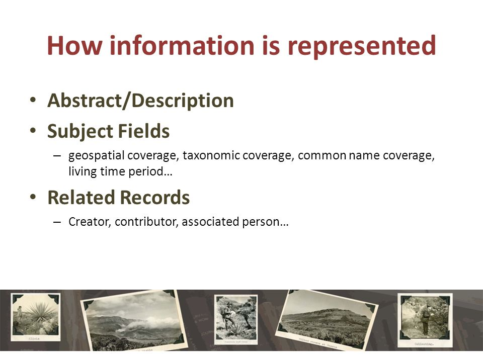 How information is represented Abstract/Description Subject Fields – geospatial coverage, taxonomic coverage, common name coverage, living time period… Related Records – Creator, contributor, associated person…