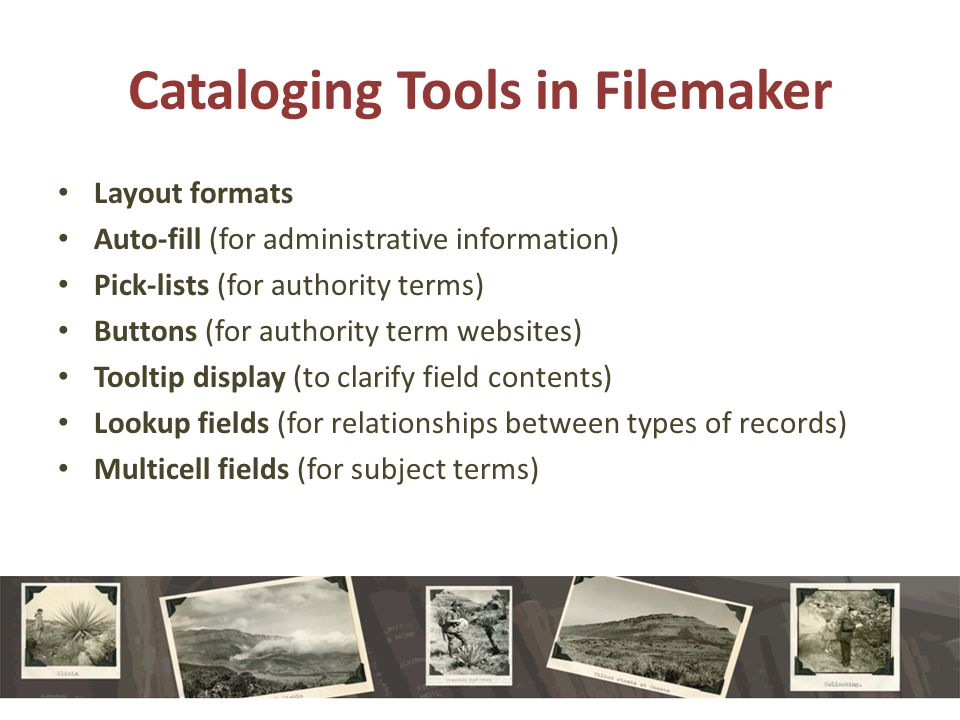 Cataloging Tools in Filemaker Layout formats Auto-fill (for administrative information) Pick-lists (for authority terms) Buttons (for authority term websites) Tooltip display (to clarify field contents) Lookup fields (for relationships between types of records) Multicell fields (for subject terms)