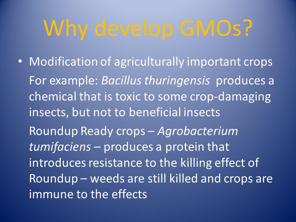 Why develop GMOs.
