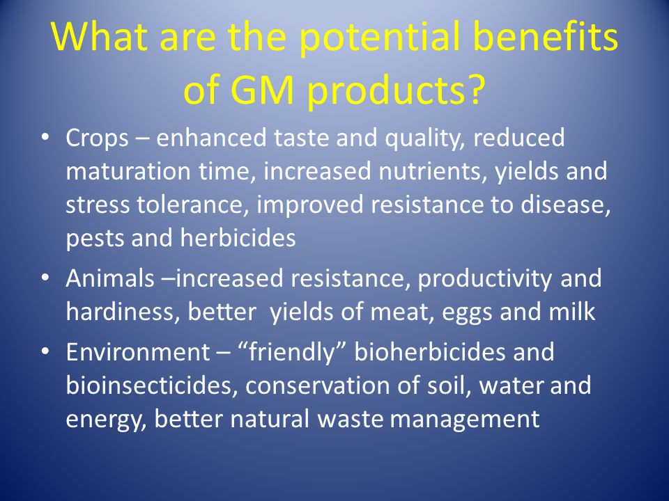 What are the potential benefits of GM products? Crops – enhanced taste and quality, reduced maturation time, increased nutrients, yields and stress to