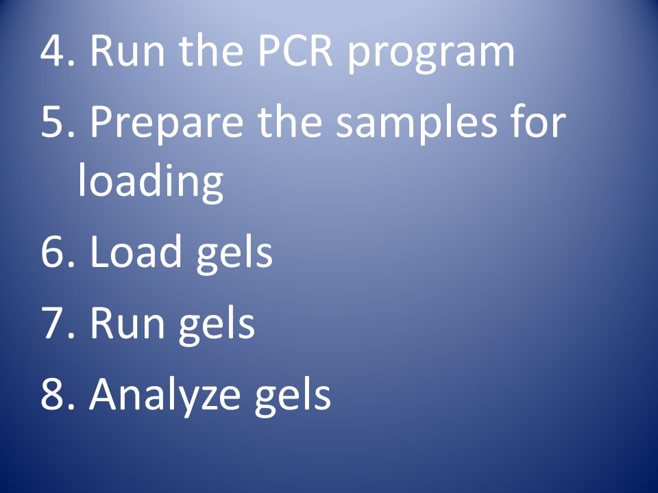 4. Run the PCR program 5. Prepare the samples for loading 6. Load gels 7. Run gels 8. Analyze gels