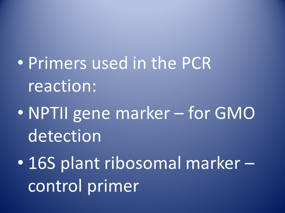 Primers used in the PCR reaction: NPTII gene marker – for GMO detection 16S plant ribosomal marker – control primer
