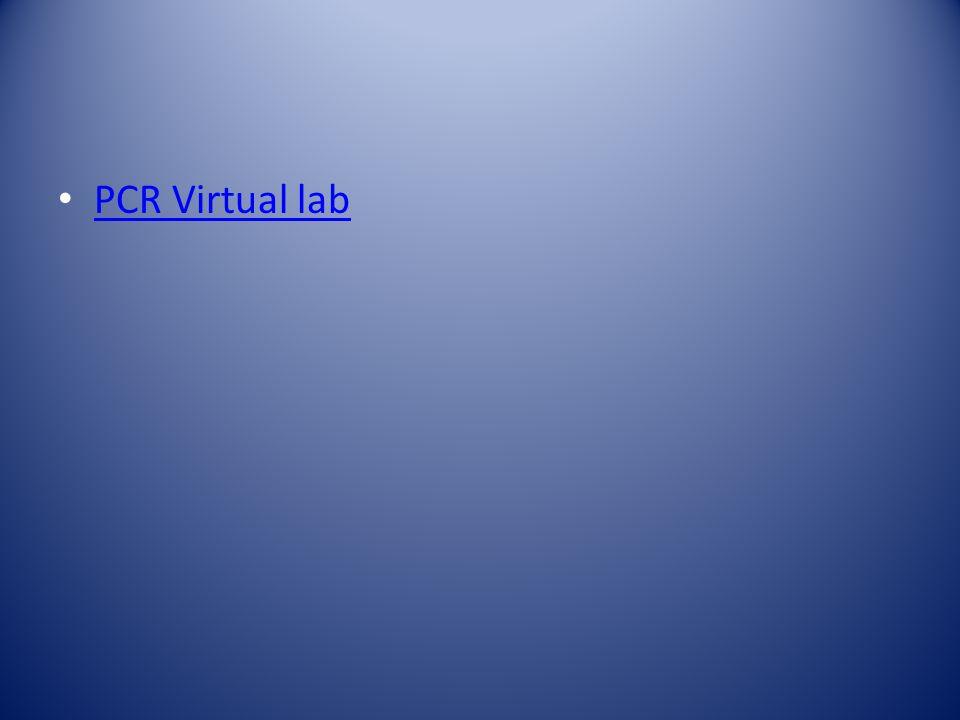PCR Virtual lab