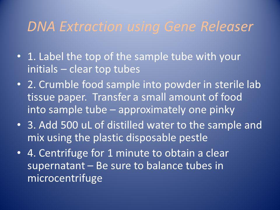 DNA Extraction using Gene Releaser 1.