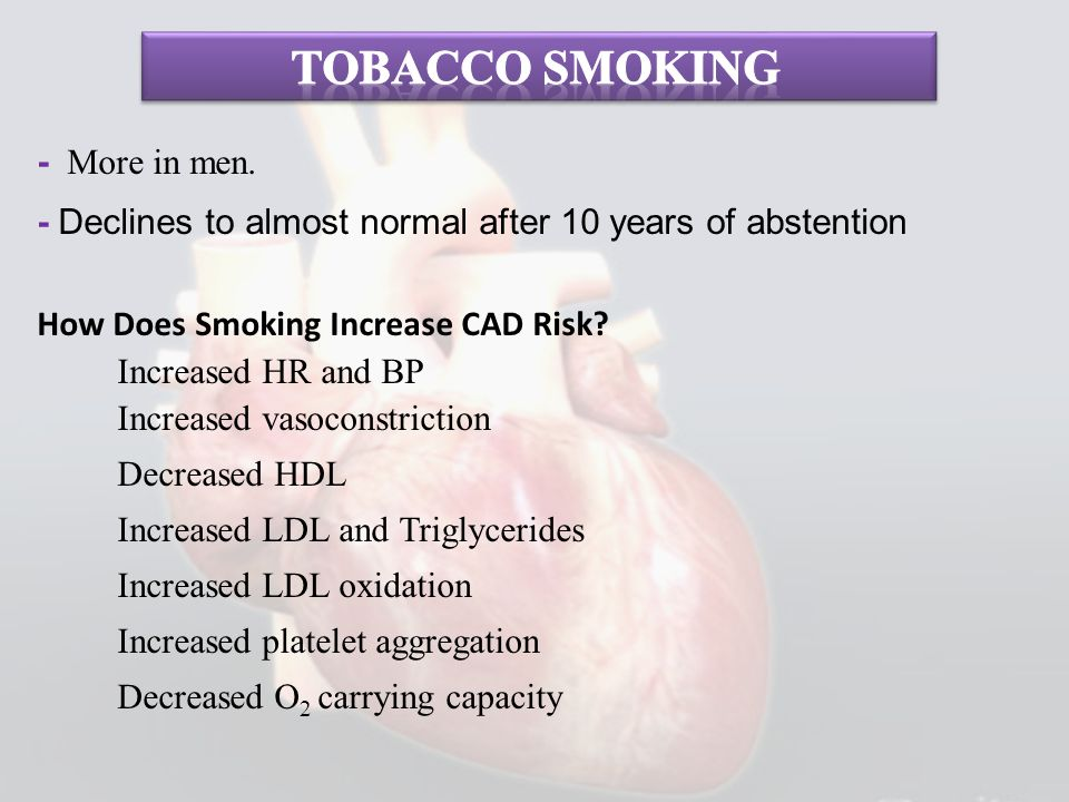 - More in men. - Declines to almost normal after 10 years of abstention How Does Smoking Increase CAD Risk? Increased HR and BP Increased vasoconstric