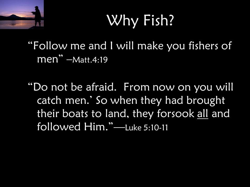 Why Fish.
