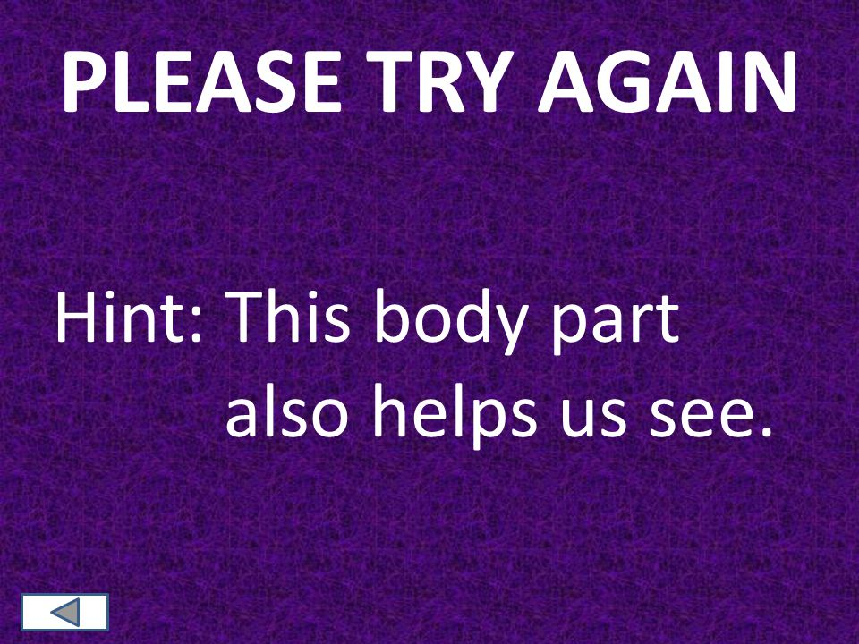 PLEASE TRY AGAIN Hint: This body part also helps us see.