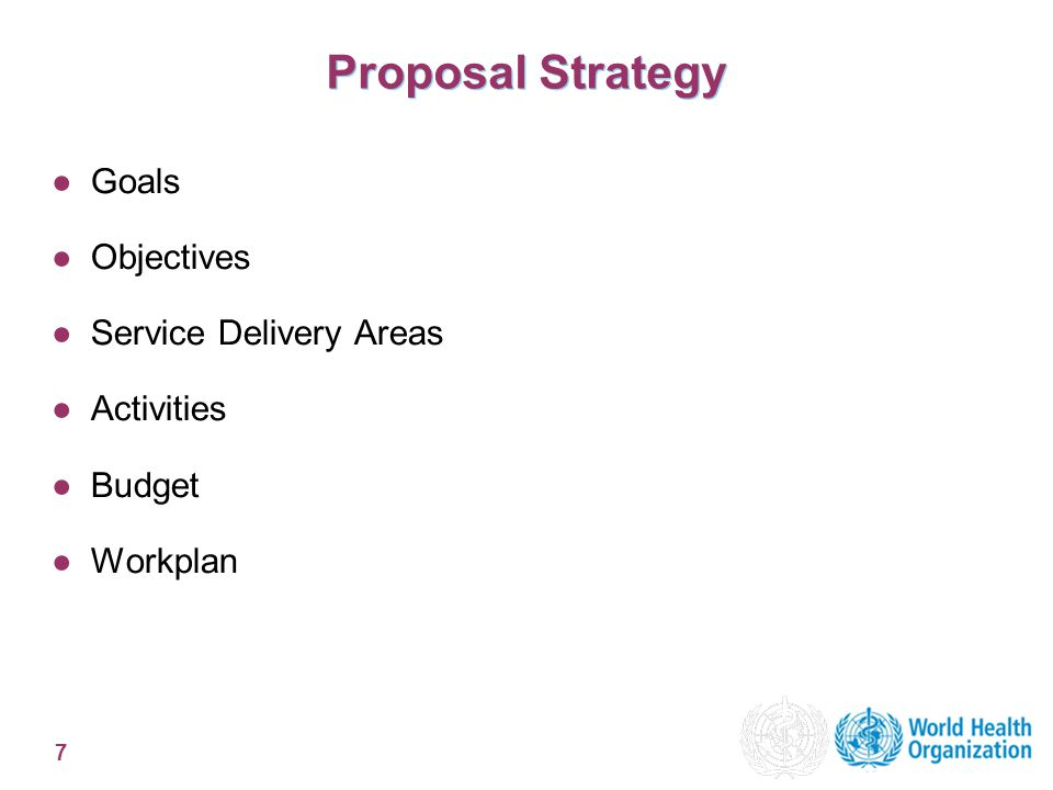 7 Proposal Strategy ●Goals ●Objectives ●Service Delivery Areas ●Activities ●Budget ●Workplan