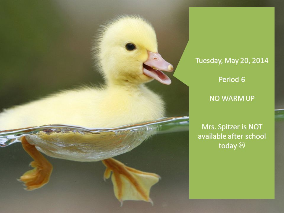 Tuesday, May 20, 2014 Period 6 NO WARM UP Mrs. Spitzer is NOT available after school today 