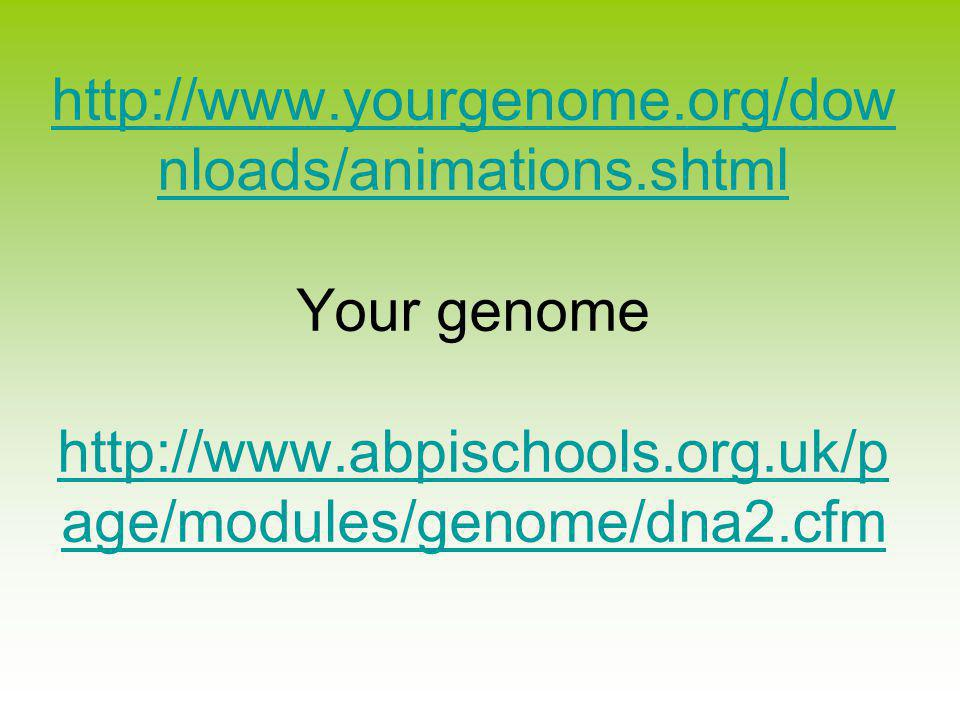 nloads/animations.shtml   nloads/animations.shtml Your genome   age/modules/genome/dna2.cfm   age/modules/genome/dna2.cfm