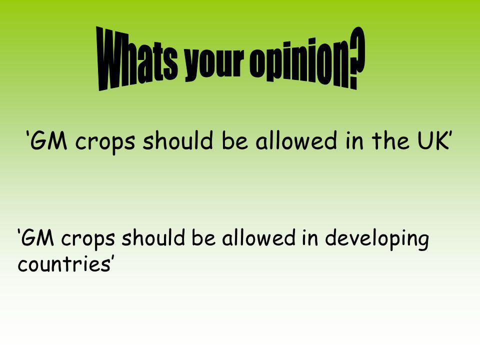 'GM crops should be allowed in the UK' 'GM crops should be allowed in developing countries'