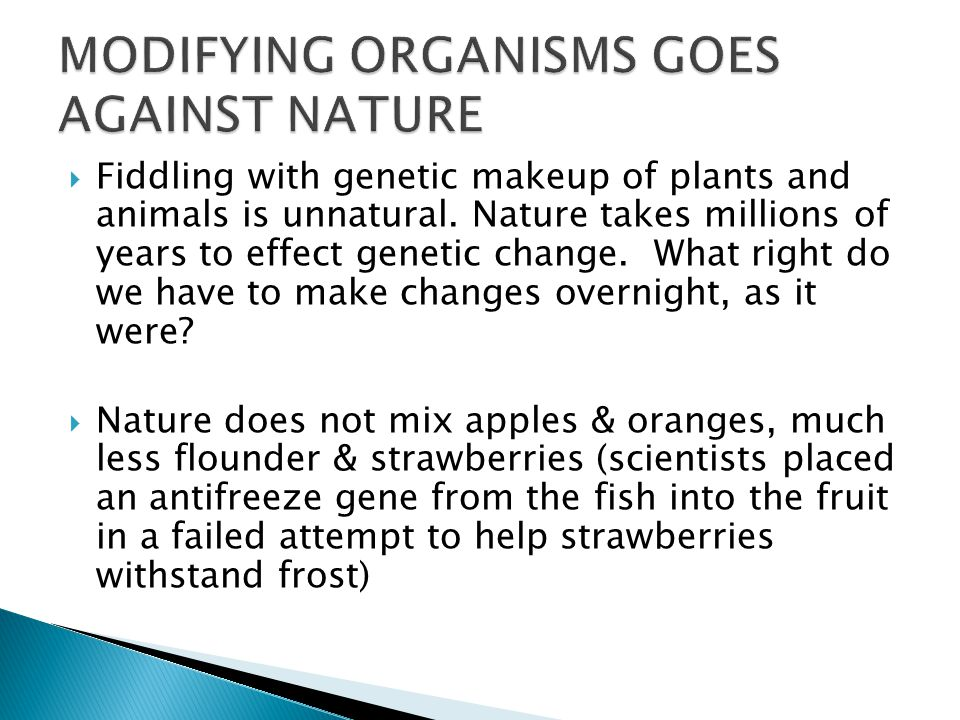  Fiddling with genetic makeup of plants and animals is unnatural.
