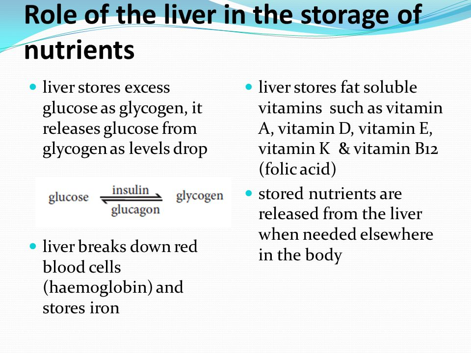Role of the liver in the storage of nutrients liver stores excess glucose as glycogen, it releases glucose from glycogen as levels drop liver breaks d