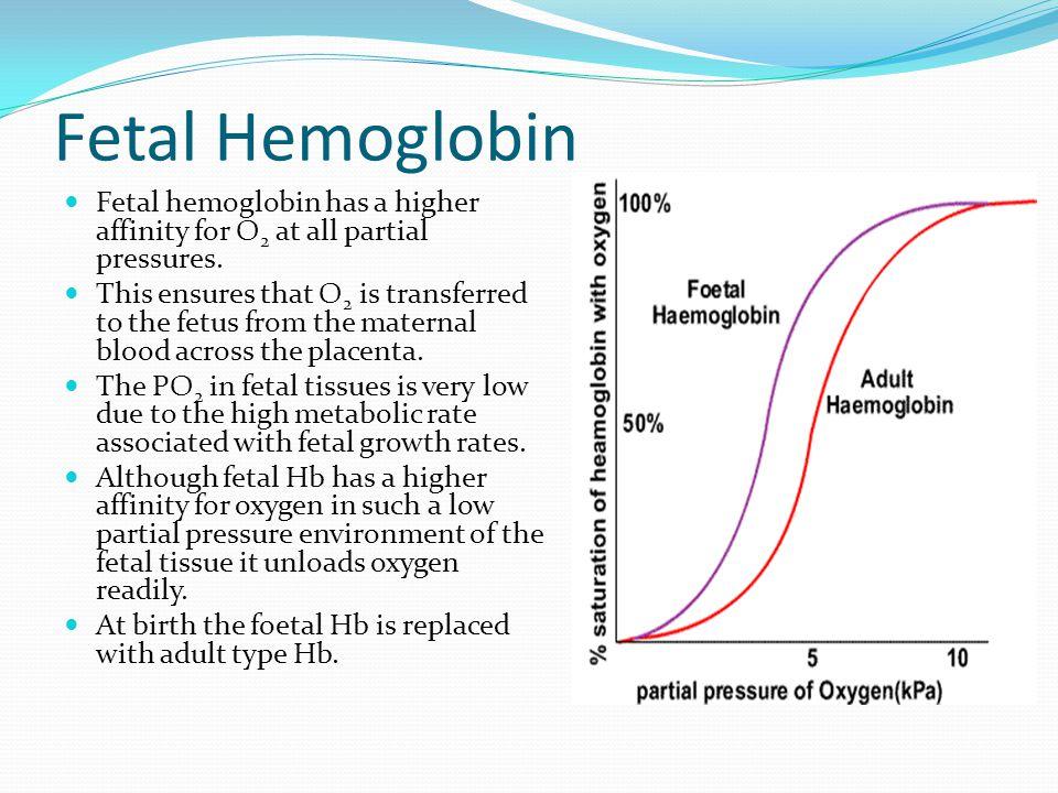 Fetal Hemoglobin Fetal hemoglobin has a higher affinity for O 2 at all partial pressures.