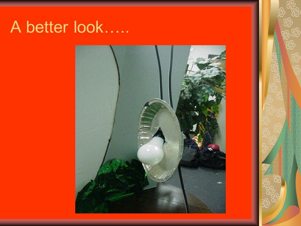 A better look…..