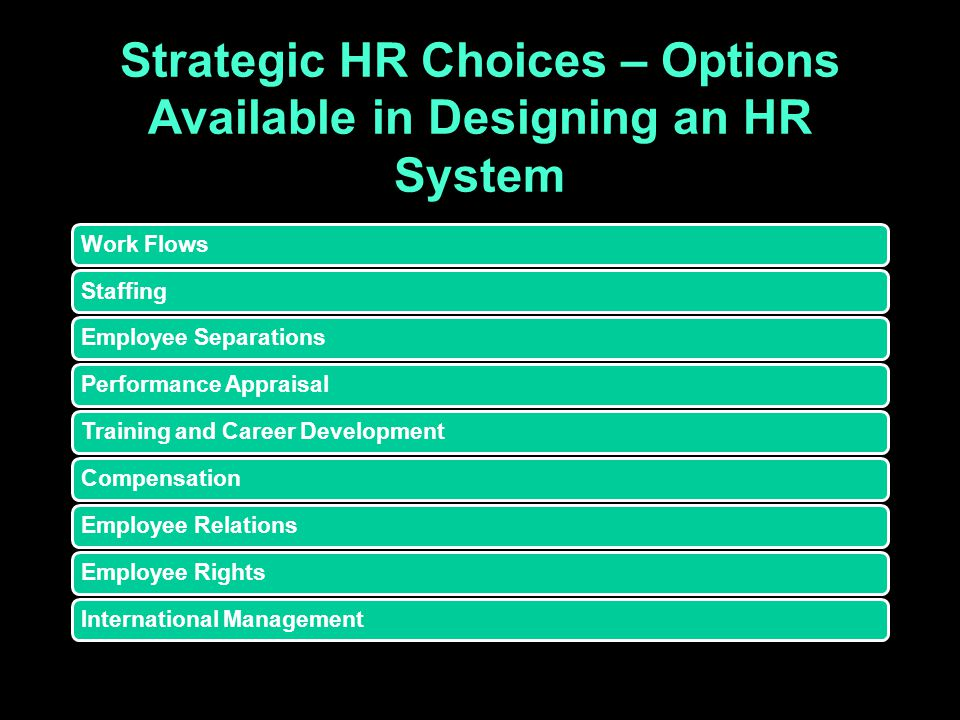 Strategic HR Choices – Options Available in Designing an HR System Work FlowsStaffingEmployee SeparationsPerformance AppraisalTraining and Career Deve