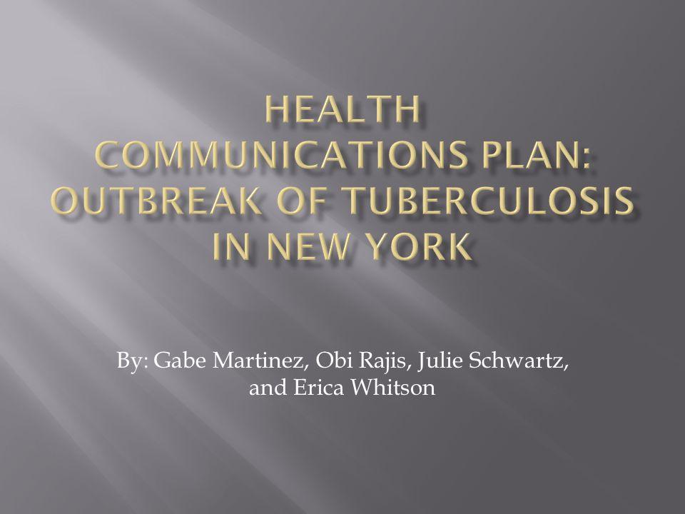 By: Gabe Martinez, Obi Rajis, Julie Schwartz, and Erica Whitson