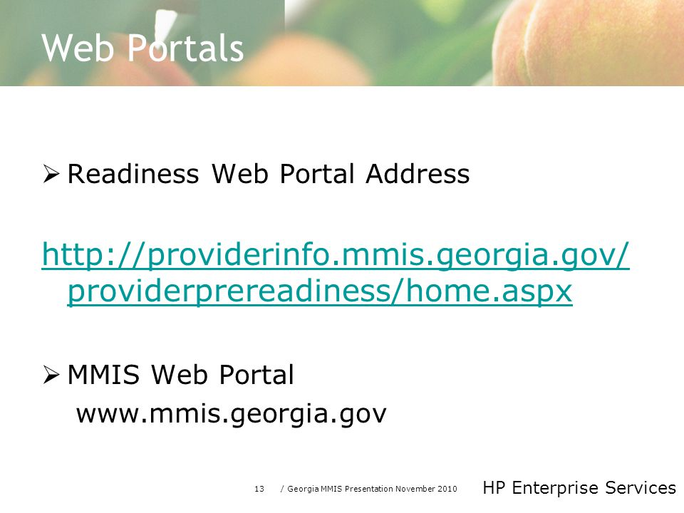 13/ Georgia MMIS Presentation November 2010 HP Enterprise Services Web Portals  Readiness Web Portal Address http://providerinfo.mmis.georgia.gov/ pr