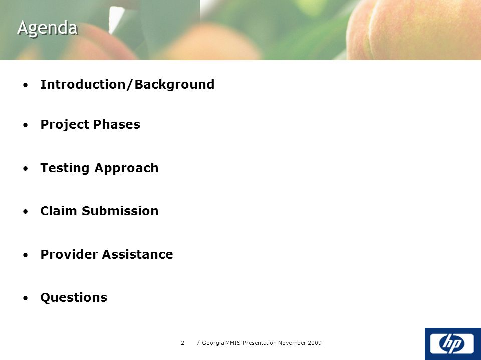 2/ Georgia MMIS Presentation November 2009 Agenda Introduction/Background Project Phases Testing Approach Claim Submission Provider Assistance Questions